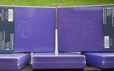 Pilates Blocks – £9